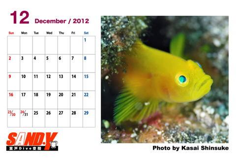 2012cal_12