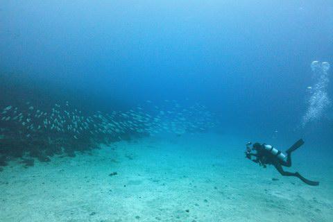 20121224maazi_diver